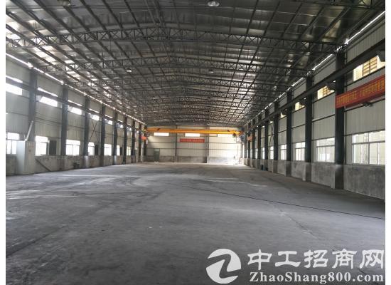 茶山镇单一层钢结构厂房4000平方米,全新出租