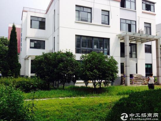 松江新桥园区独栋小面积办公研发总部出售450万