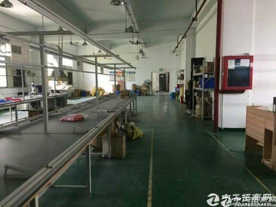 清湖有轨电车旁花园式厂房800平米,超低价转租-图4
