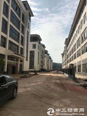 玉洞站口工业园正规厂房整栋招租
