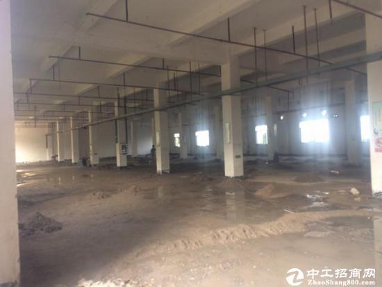 东莞厚街附近原房东三层独院3200平方标准厂房急租