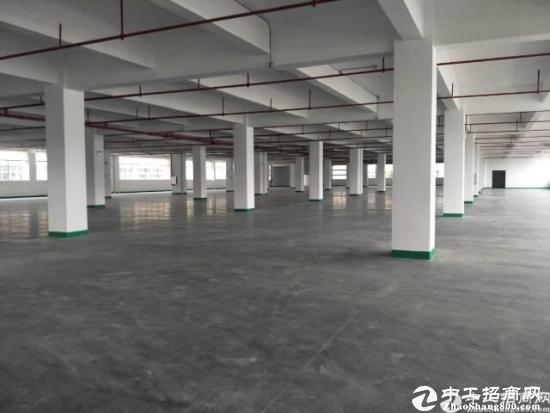 坪山大工业区高速口3000平整层厂房出租-图3