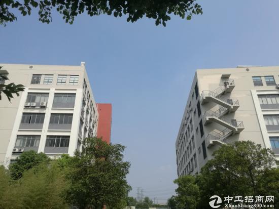 松江区单层104板块可办公仓库小型生产带车位