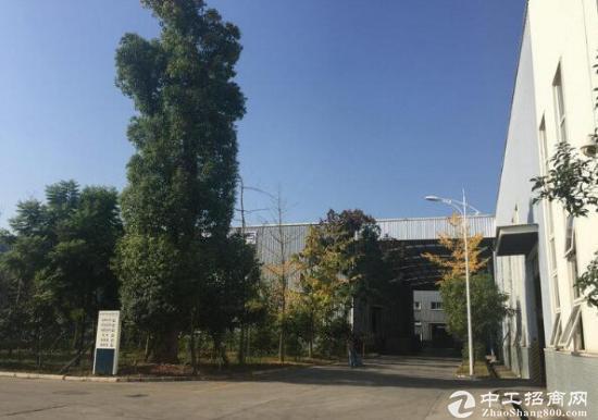 独门独院厂房高13米带空坝子出租
