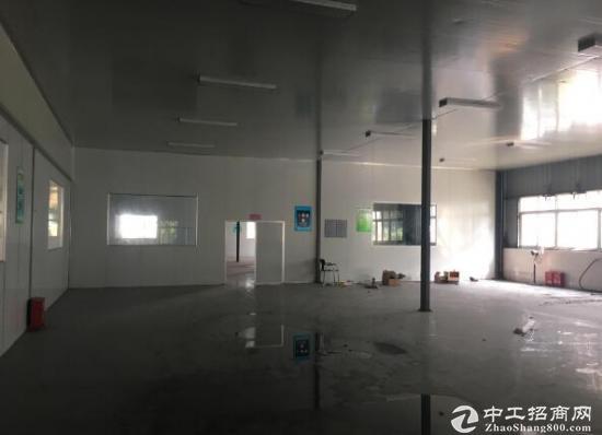 高新西区大面积三万多平新厂房出租-图2