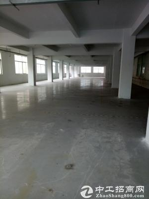 原房东厂房1800平米10元出租,无公摊-图3