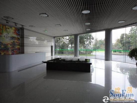浦江8号线旁515平底层50年绿证厂房仓储办公研发