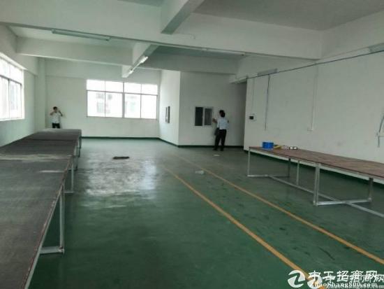 沙坑二路新出办公厂房低价招租600平米