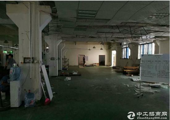 新和大道标准一楼厂房900平方带牛角地坪漆出租-图4