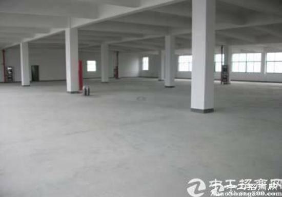 厚街镇新出经典小独院厂房2000平方招租-图2