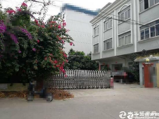厚街镇新出经典小独院厂房2000平方招租