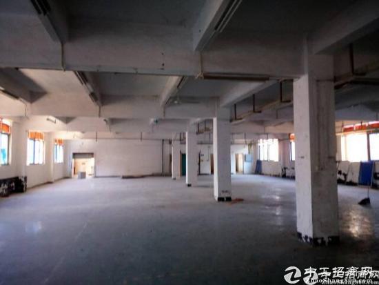 独院厂房楼上1500平米带装修厂房出租-图3