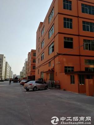 福永和平楼上二三四层每层2500平出租可分层租-图2