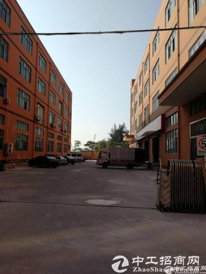 福永和平楼上二三四层每层2500平出租可分层租