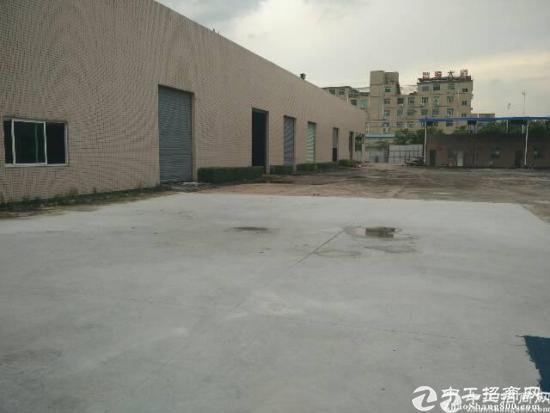 东莞沙田镇8米滴水位钢构厂房分租900平方出租-图3
