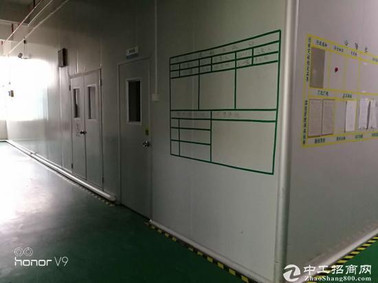 食品工厂厂房及设备转让/出租-图4