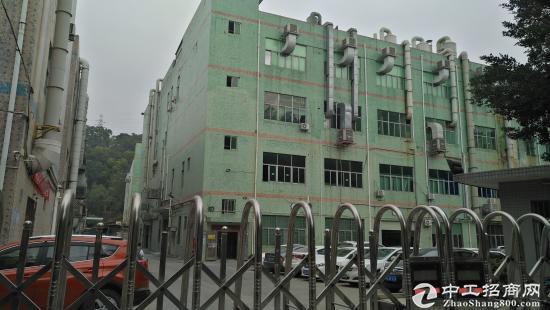 有排污证,碧岭电镀厂二楼565平整层带装修厂房招-图2