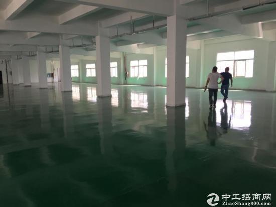 坪山 石井 工业园3楼960平米,带现成装修办公