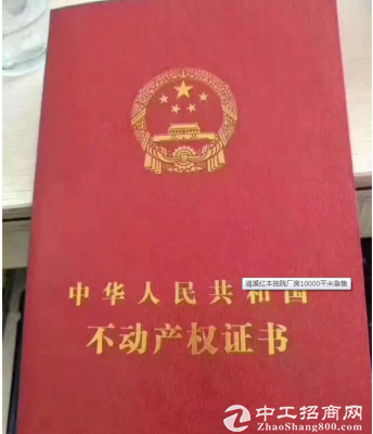 清溪红本独院厂房10000平米急售-图4