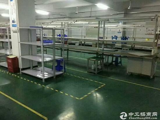 凤凰楼上620平带装修厂房招租-图2