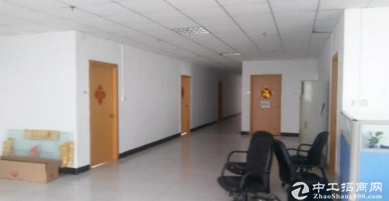 沙井共和工业区标准厂房一楼分租1000平米