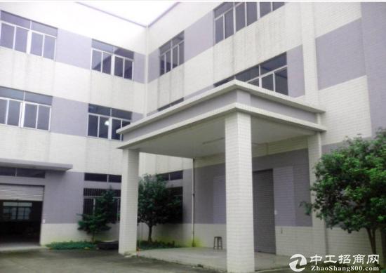 沙井共和工业区标准厂房一楼分租1000平米-图3