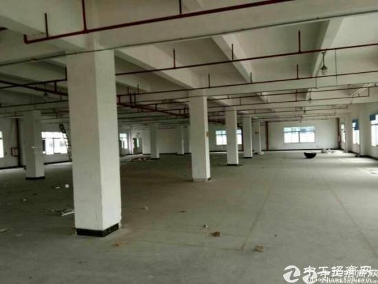 南城白马靠汽车总站附近原房东独院三层3180平米厂房出租-图4