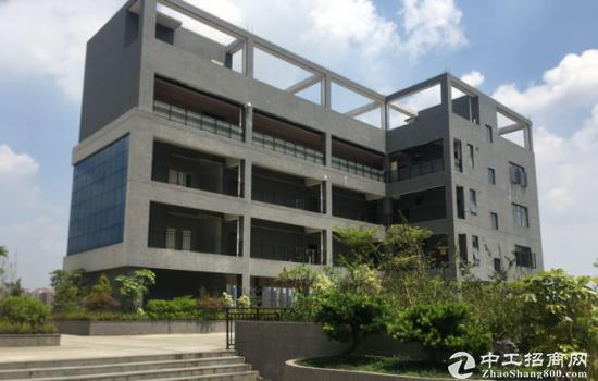 深圳坪山新区建筑33000 国有土地使用权及建-图2