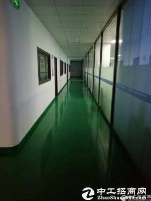 坪山 带红本可做医疗厂房2300平出租可分租-图5