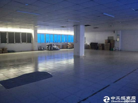 爱南路新出楼上300,420平装修厂房-图3