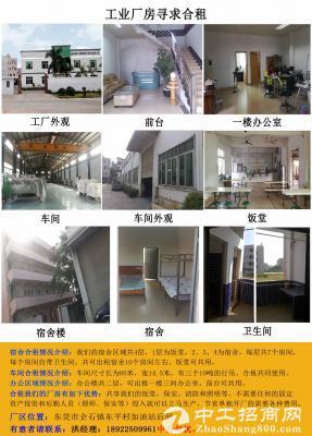 东莞市企石镇东平村工业厂房寻求合租