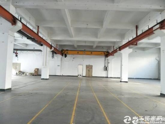 沙头一楼整层900平方现成行车高度5.5米厂房出租