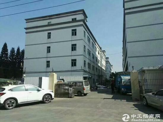 坪山标准厂房一楼550平方高度6米出租-图3