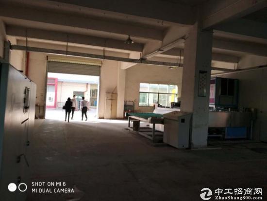 坪山标准厂房一楼550平方高度6米出租-图4