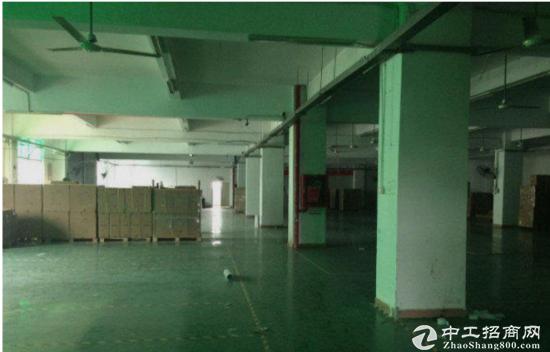 沙井马鞍山标准二楼1080厂房带地坪漆出租八成新-图4