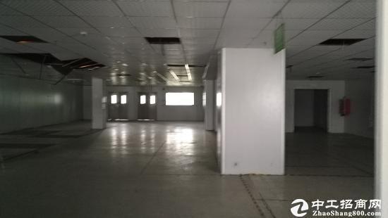 坪山带红本可做医疗厂房楼上1300平出租-图3