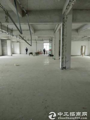 龙岗爱南路边新出楼上带装修办公室580平出租