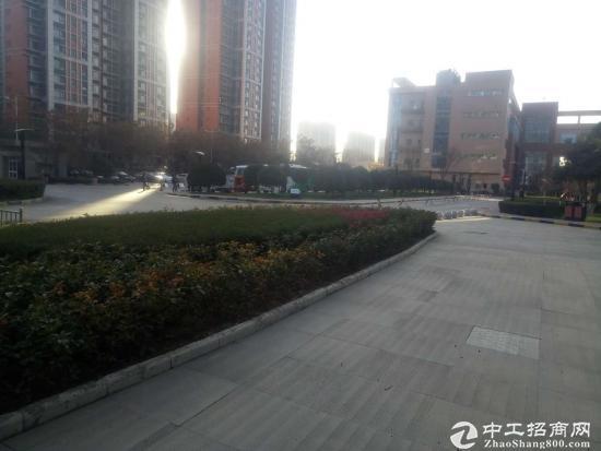 电子城西京电气园区560平米411平米生产办公-图2