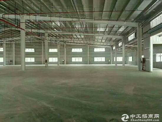 龙岗新生独院钢构2000平米带行车超大空地使用