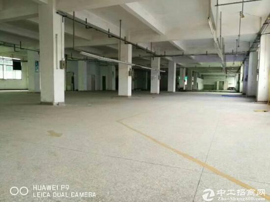 龙岗深汕路旁边新出厂房10500平出租
