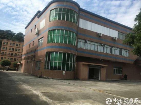 厚街原房东独门独院3层厂房出租-图3