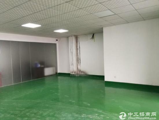 凤凰楼上1000平带装修厂房招租-图5