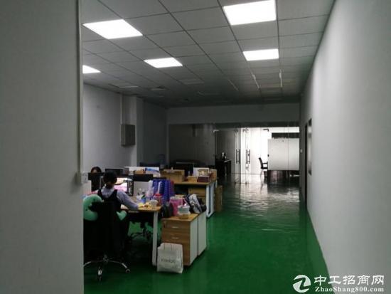 凤凰楼上1000平带装修厂房招租-图6