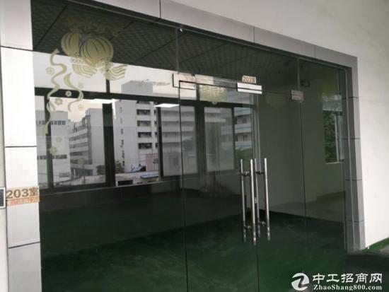 凤凰楼上1000平带装修厂房招租-图4