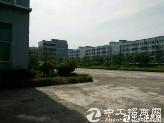 东莞厚街成熟工业区带装修标准厂房出租-图2