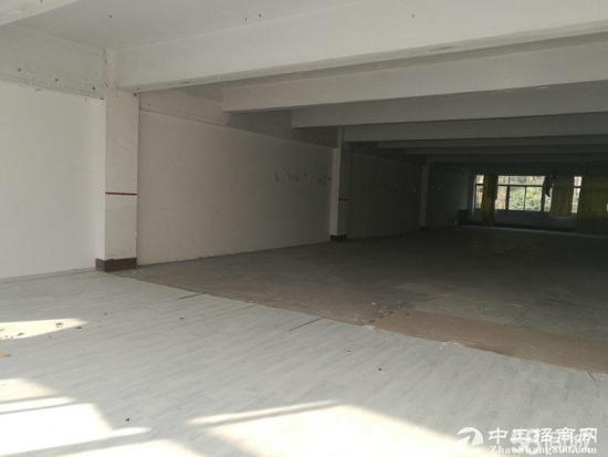 横岗原房东三楼1200平米,面积实在没有公摊-图3