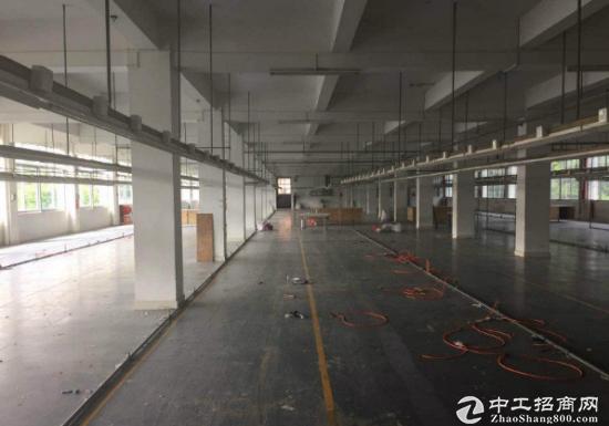沙井一楼厂房1000平方空地1300平方,带地坪漆-图4