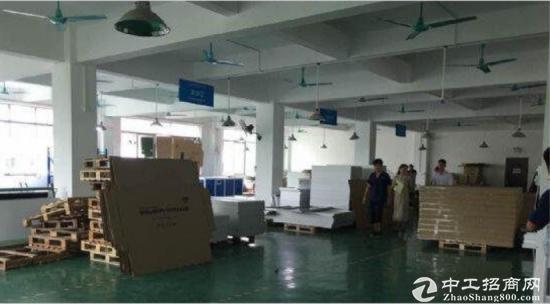 龙华标准厂房6270方带精装修办公