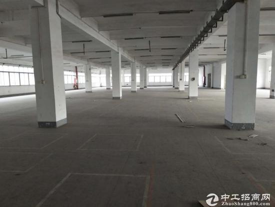 上沙一楼厂房实际800方层高6米房东直租-图2