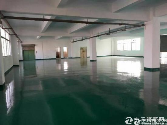 坪山新出大型工业园精装修500平厂房招租-图4